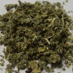 Can synthetic cannabinoids help cancer patients beyond providing comfort?